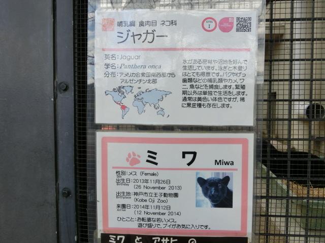 関西 082
