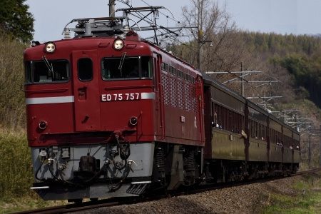 ED75.jpg