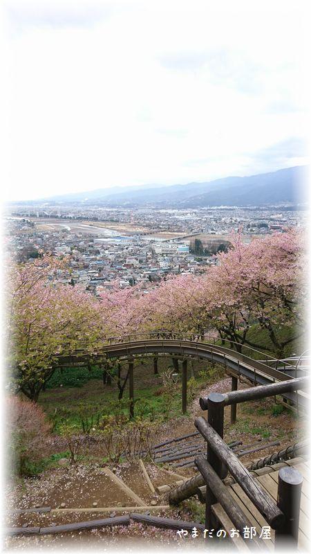 まつだ桜まつり⑦