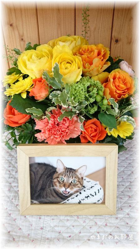 2017年 ドリルの命日のお花①
