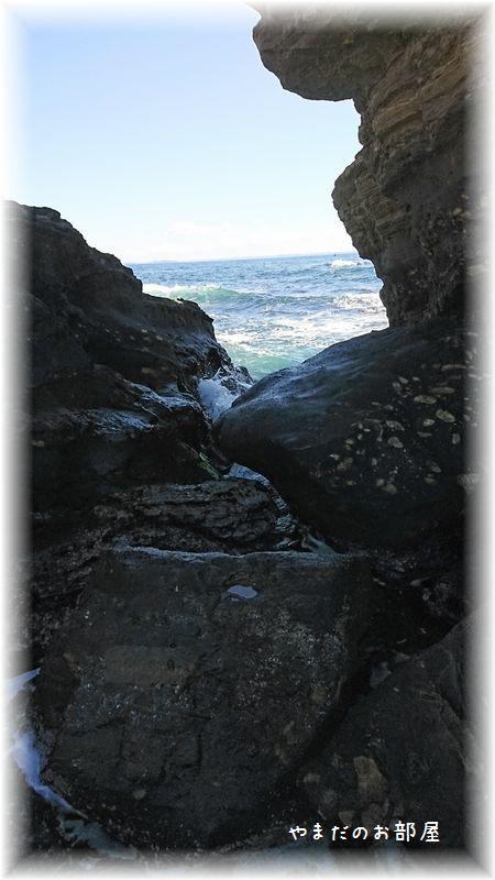 城ヶ島、馬の背洞門⑮