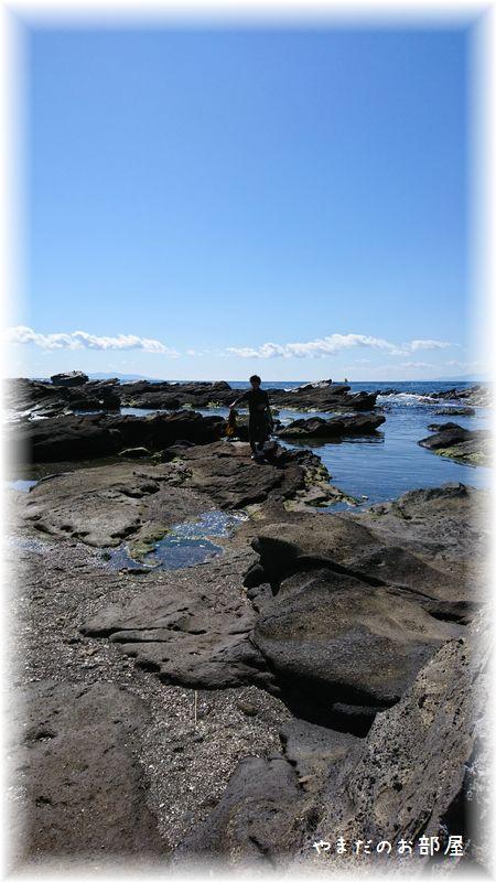 城ヶ島、馬の背洞門24