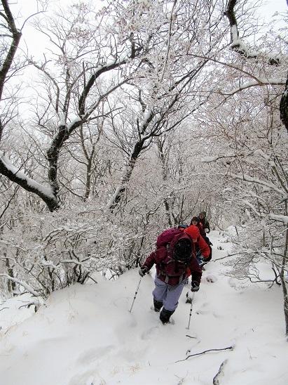 鶴見岳登る
