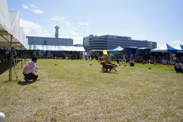 2011-9-11.jpg