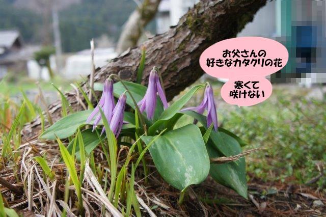 DSC05892.jpg