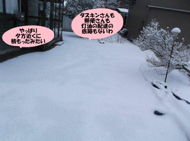 DSCF5106.jpg