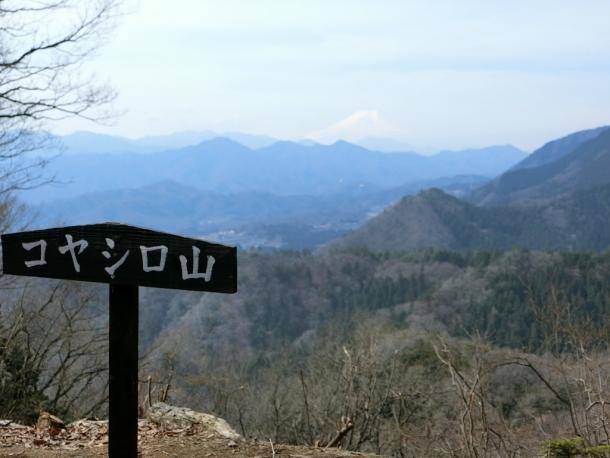 コヤシロ山富士山600