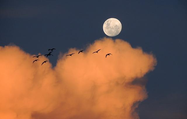 moon-323425_640.jpg