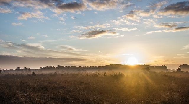 sunrise-717816_640.jpg