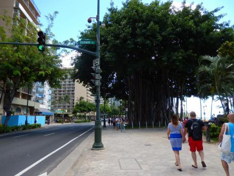 ハワイ2016.10カラカウア大通り