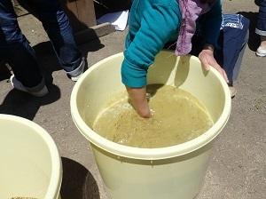 精製水を入れて撹拌する