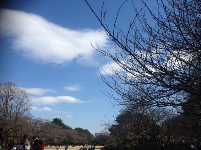 御苑風景3