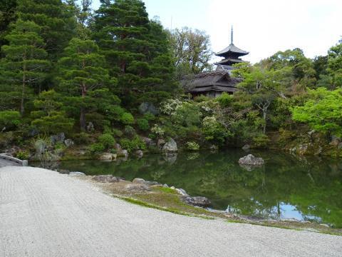 2017年4月18日 仁和寺 庭園