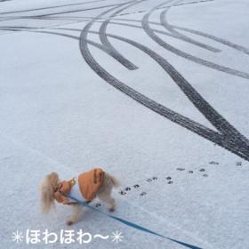 雪のハートと龍