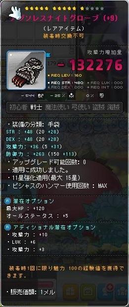 Maple170226_164636.jpg