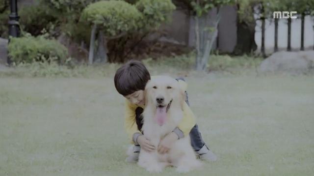 #3コボシ犬-5