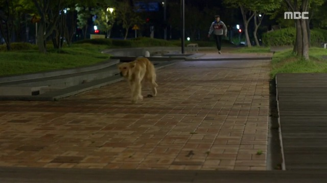 #3コボシ犬-7