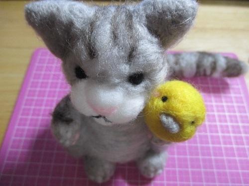 猫さんピヨ太だよ