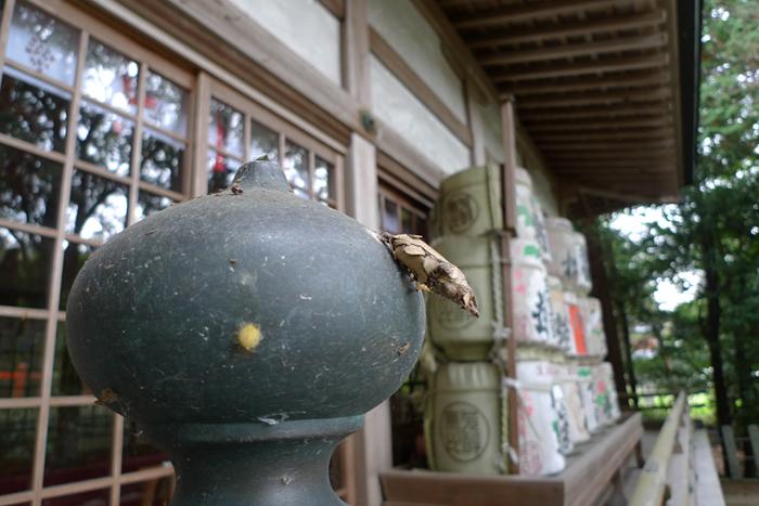 伊賀の國の神社  敢國神社  14