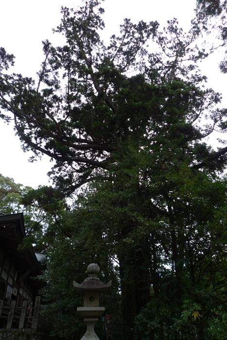 伊賀の國の神社  敢國神社  27