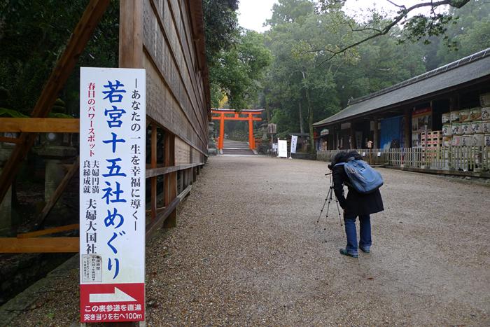 大和の国の神社  春日大社  2