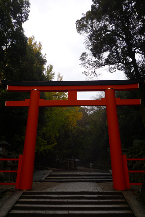 大和の国の神社  春日大社  5