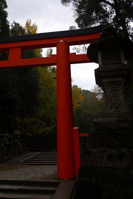 大和の国の神社  春日大社  8
