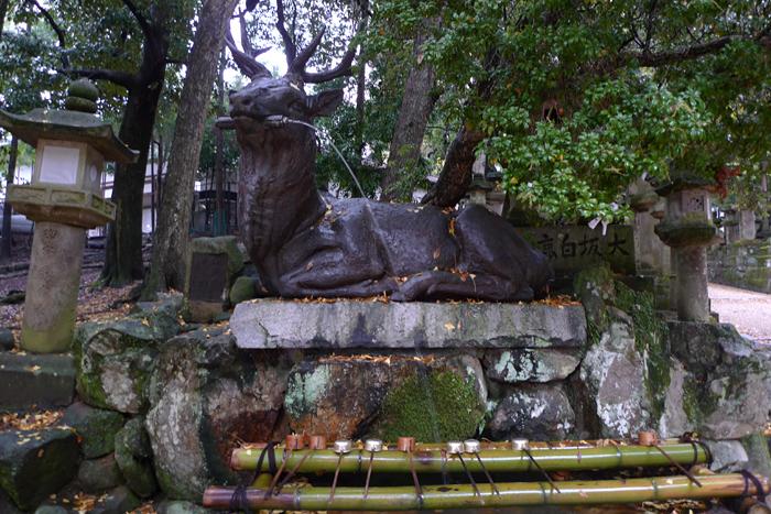 大和の国の神社  春日大社  13