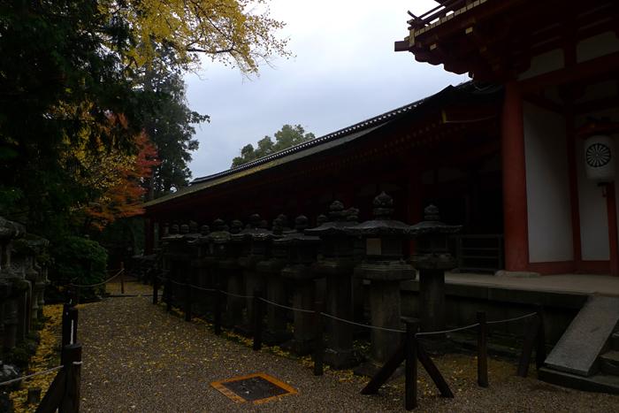 大和の国の神社  春日大社  26