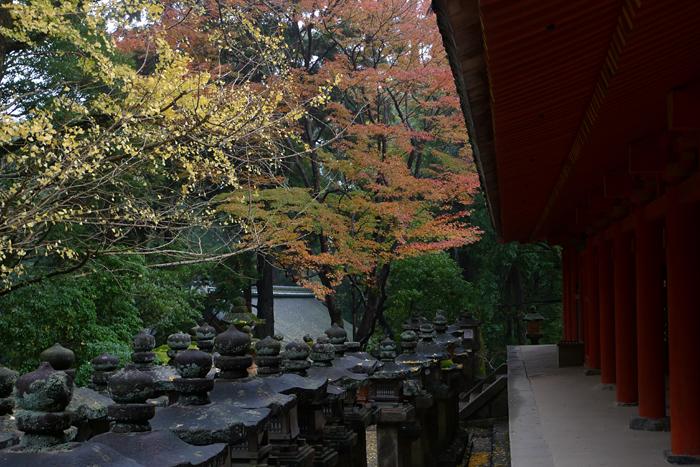 大和の国の神社  春日大社  30