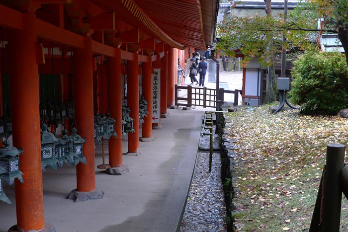 大和の国の神社  春日大社  56