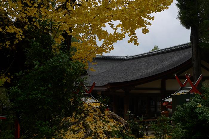 大和の国の神社  春日大社  57