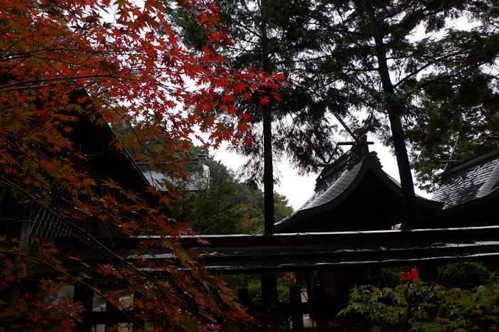 大和の国の神社  龍田神社  16
