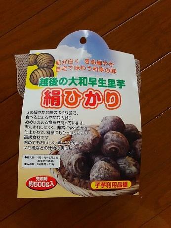 キヌヒカリ (2)