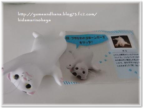 001-ココ人形170215-001
