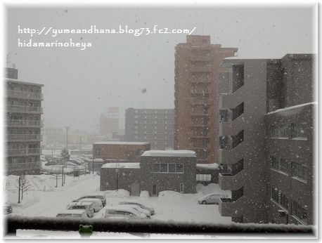 001-雪170217-5