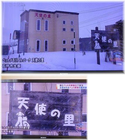 001-テレビ天使の里170219-23