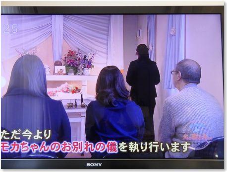 001-テレビ170219-23-3
