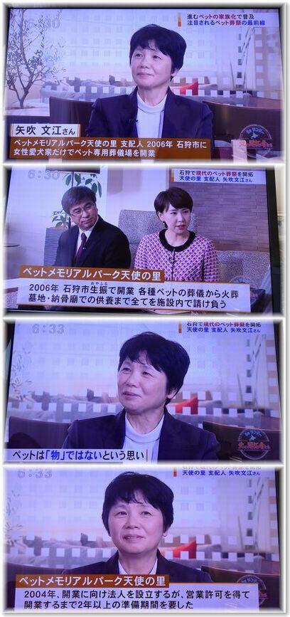 001-3テレビ2019--0224-4