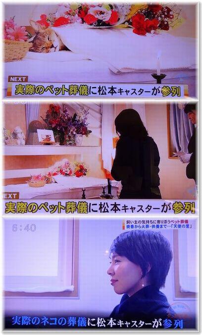 001-6テレビ190219-0224