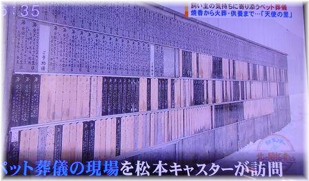 001-テレビ170219-23-5