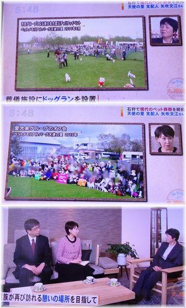 001-テレビ170219-0224-9