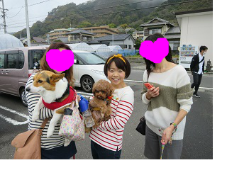 snap_yumiaki6224_20174202445.jpg