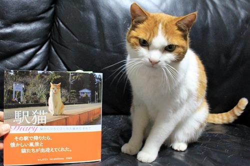 ブログNo.877(ローカル線の駅猫写真集にゃん♪)4