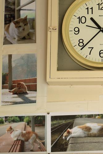 ブログNo.877(ローカル線の駅猫写真集にゃん♪)6