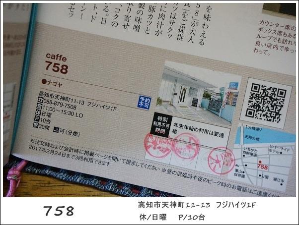 DSC07248.jpg
