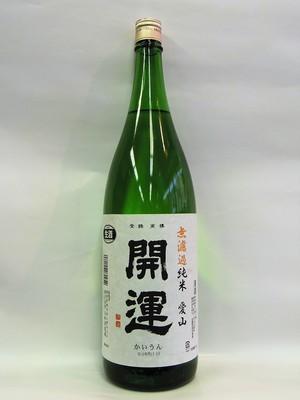 kaiunaiyama101T.jpg