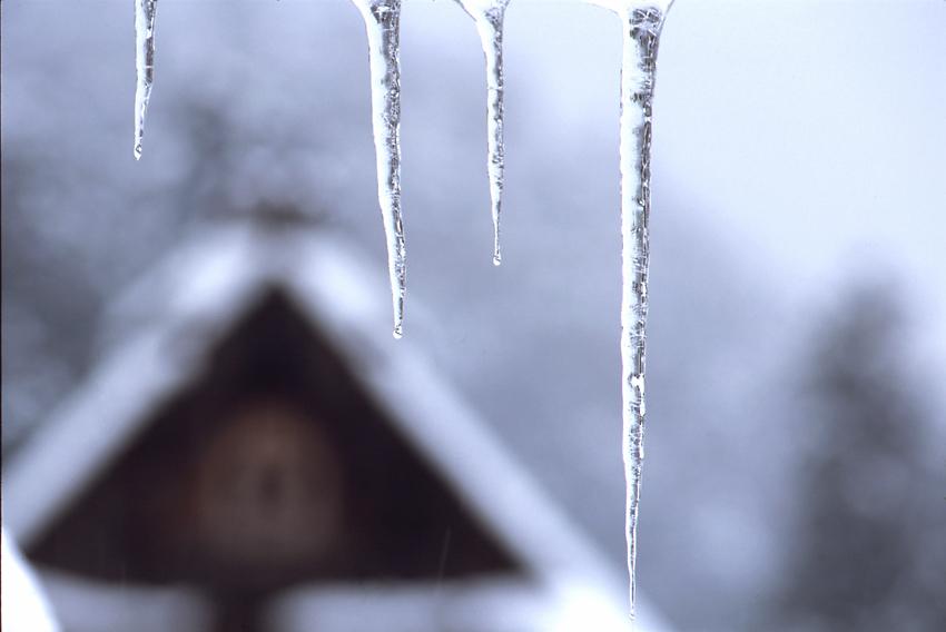 雪の美山03