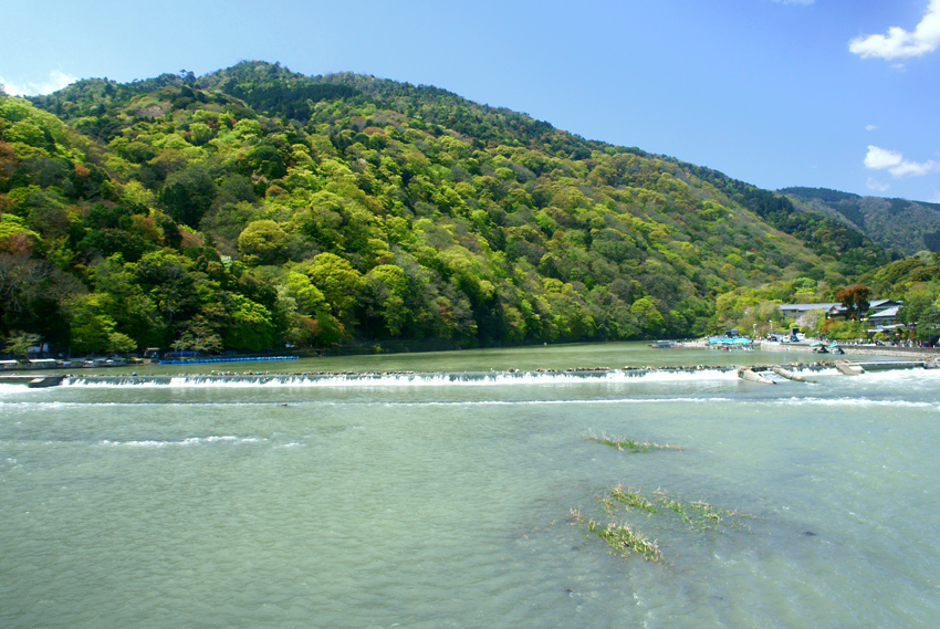 春色の(嵐山)02