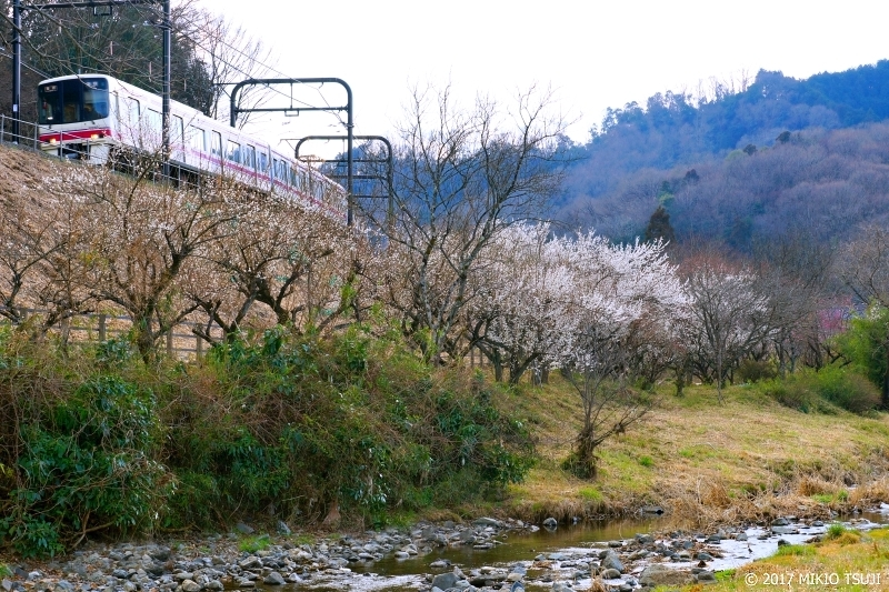 絶景探しの旅 - 0147 高尾梅郷と京王高尾線 (東京都 八王子市)
